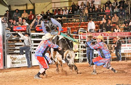 Bull Riding 10