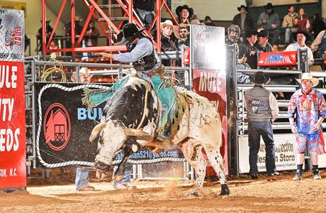 Bull Riding 11