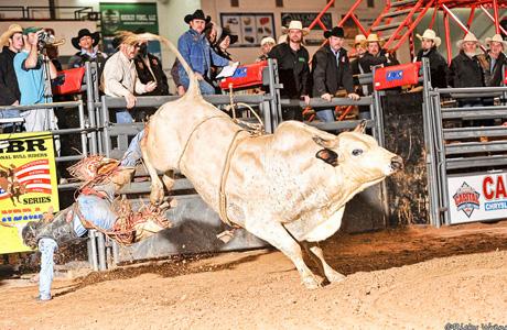 Bull Riding 13