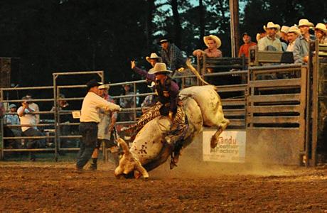 May 2011: Bull Riding 3