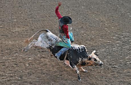 May 2011: Bull Riding 5